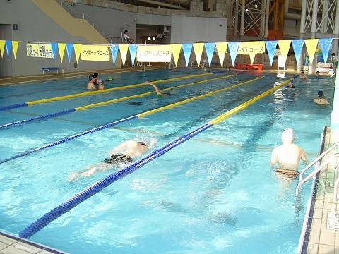 競泳用プール