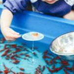 金魚すくいのポイ|種類、号数、表裏、破れにくいのは?使い方のコツも!