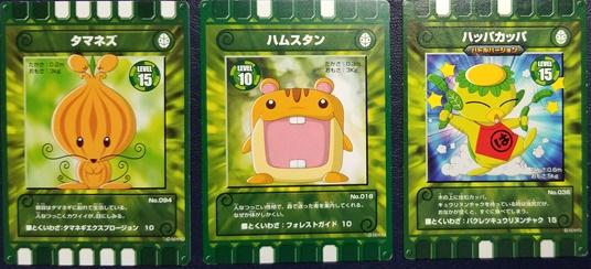 緑カード10